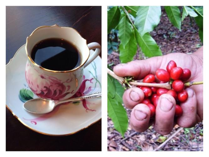 ペルーのコーヒーが人気です!イメージ1