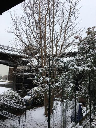 雪景色イメージ1